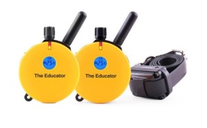 ET-400 2T 1-Dog Educator with 2 Transmitters
