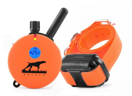 Best Training Collar for Dog
