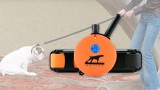 5 Reasons to Use Remote Trainers - E-Collar Technologies