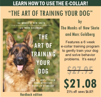 The Art of Training Your Dog
