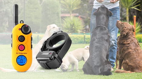 E-Collar Technologies EZ Educator Remote Training Collars - E-Collar Technologies